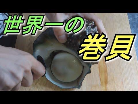 刺身�も硬���世界最大最硬最強�巻�を食�る�