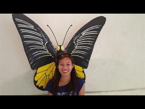 Bohol Misadventure Pt 4:  Ladyboy Butterflies???..Who'd a Thunk It?