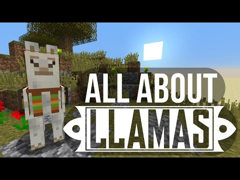 llamas:-taming,-breeding-&-more---minecraft