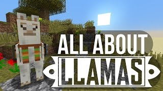 Llamas: Taming, Breeding & More - Minecraft