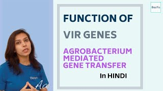 Agrobacterium Mediated Gene Transfer - Part 3 | Function of Vir Genes