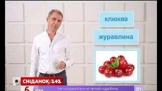 Що таке лохина, глід і порічка? - експрес-урок