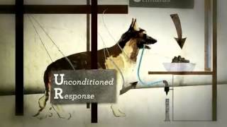Psyc 104 Week 3 - Classical Conditioning Pavlov