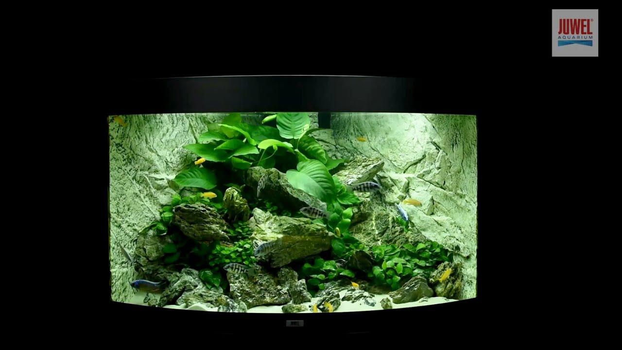 juwel aquarium trigon 190 einrichtungsbeispiel tutorial youtube. Black Bedroom Furniture Sets. Home Design Ideas