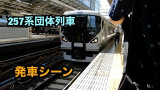 257系団体列車 発車シーン【東京駅】