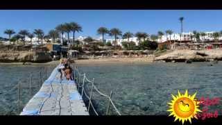 Отзывы отдыхающих об отеле SUNRISE Select Diamond Beach Resort 5*  г. Шарм-Эль-Шейх (ЕГИПЕТ)