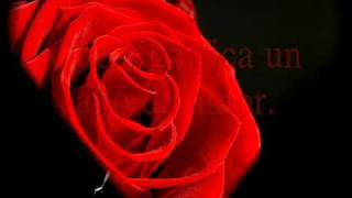 Letra un año de amor