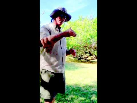 Fort Jefferson & The Dry Tortugas- Tour Guide Michael Explains