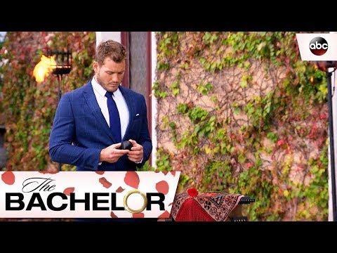 This Season On - The Bachelor