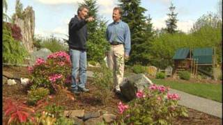 Ciscoe on: Fire - Landscaping Tips for Wildfire Prevention