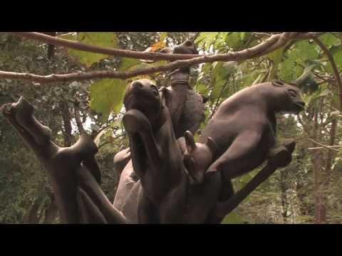 Gambie - croisière à la découverte du Monde (Documentaire, Découverte, Histoire)