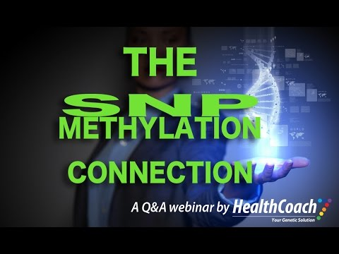 The Methylation/SNP Connection