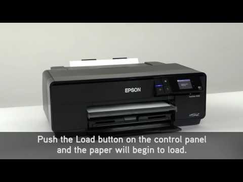 Epson SureColor P600 13