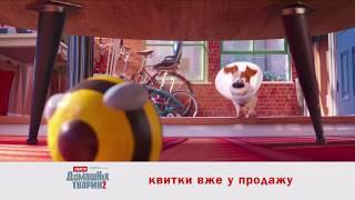 Секрети домашніх тварин 2. У кіно 30 травня