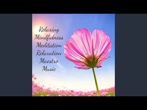 Relaxing Mindfulness Meditation Relaxation Maestro Music for Good Thinking and Spiritual Healing