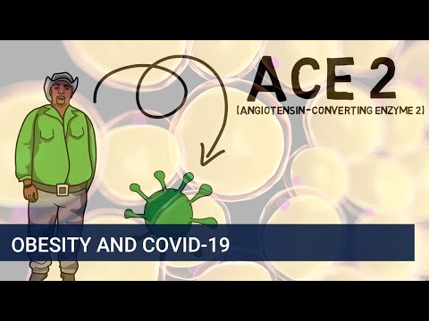 Why is being overweight or obese linked to COVID-19?