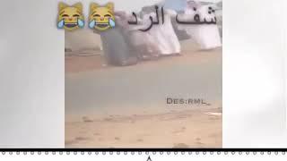 سبو الاشراف وطقطقو عليهم وجاهم الرد الساحق