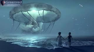 Lucid Dreaming Music | Binaural Beats Sleeping Music, 8 Hour Sleep Music with Delta Waves