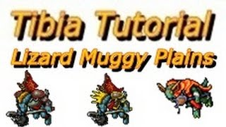 tutorial caverao avenger tibia lizard muggy plains farmine zao