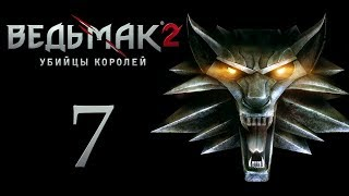 The Witcher 2 (Ведьмак 2) Флотзам #7