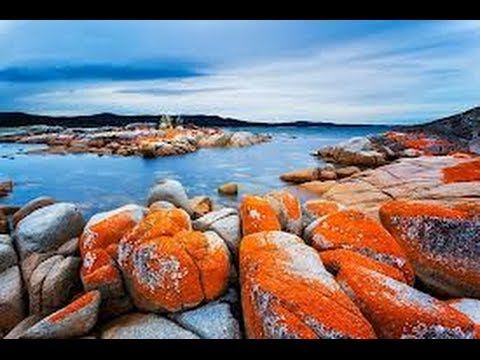 Bay Of Fires (Tasmania)