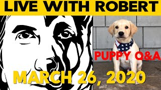 Puppy Q&A LIVE  Answering Your Questions about PUPPIES  Robert Cabral Dog Training