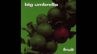 Watch Big Umbrella The Way Of All Storms video