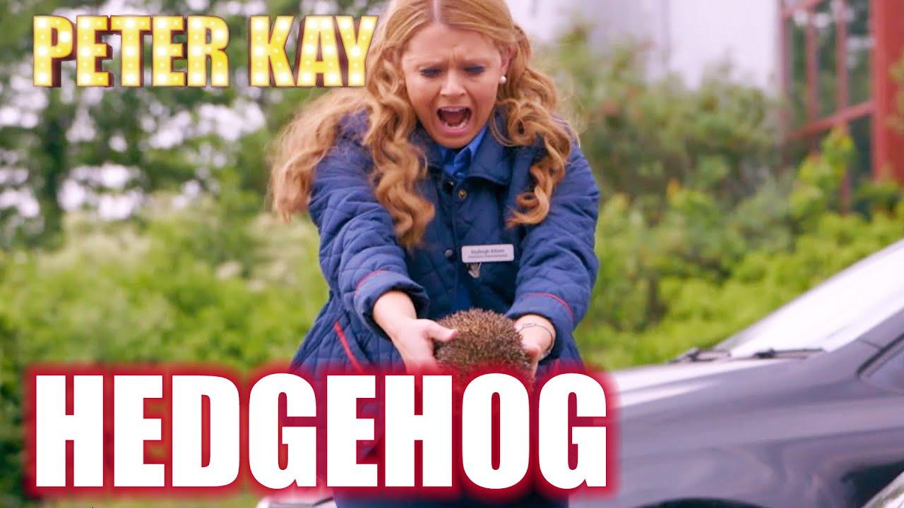 Kayleigh Saves A Hedgehog | Peter Kay's Car Share