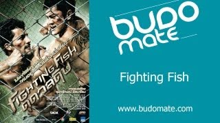 Fighting Fish Trailer - budomate.com