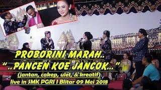 Limbukan Percil CS, Proborini & Ki Sun Gondrong live SMK PGRI 1 Wlingi