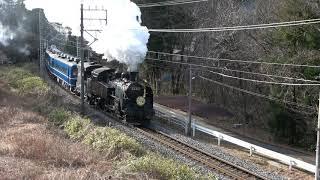 東武鉄道 SL大樹1号 いちご王国PRHM付き 新高徳~小佐越 2020/01/11
