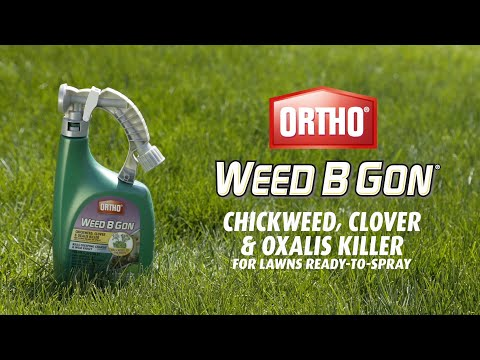 How To Use Ortho Weed B Gon Clover Oxalis For Lawns Ready Spray