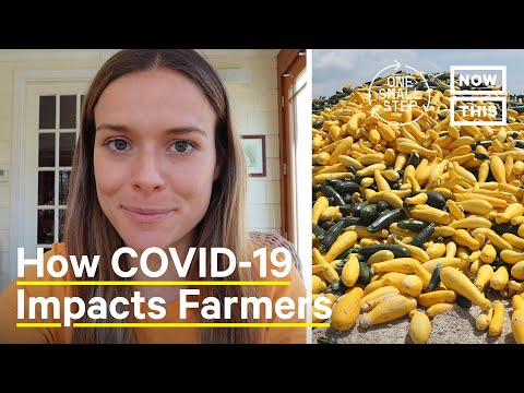 How Small Farms Adapt to COVID-19 Pandemic Shutdowns | One Small Step | NowThis