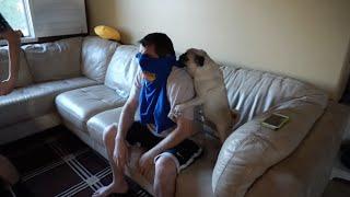 CRAZY NBA FINALS GAME 7 REACTION!! (dog humps my dad)