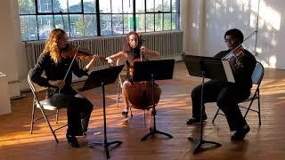 Jesu Joy of Man's Desiring String Trio, City Six Strings