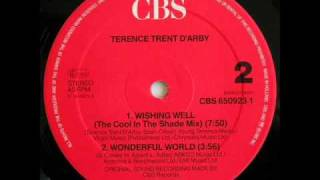 Wishing Well 12 39 39 TERENCE TRENT D 39 ARBY DJ OUIPET 1987.mp3