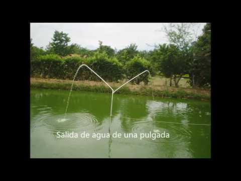 proyecto recirculaci n y oxigenaci n del agua en