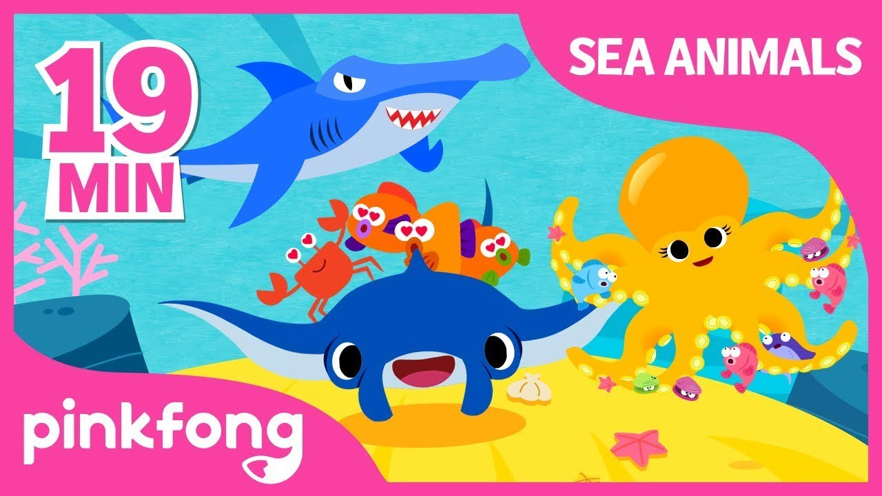 Super Duper Manta Ray and more | Sea Animal Songs | +Compilation | Pinkfong Songs for Children