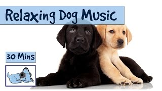 Relaxing Dog Music for Your Dog - perfect for nervous Retrievers or Labs.