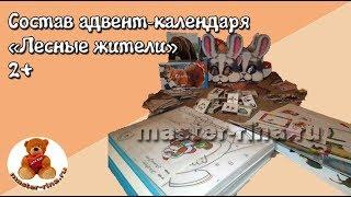 Состав адвент календаря Лесные жители 2+