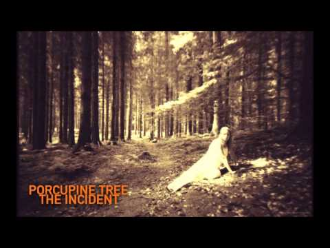 6: Porcupine Tree - Time Flies