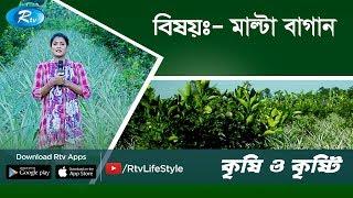 Krishi O Krishti | মাল্টা বাগান | Orange Garden | Ep-174 | Rtv Lifestyle HD