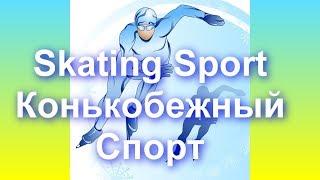 Спорт Что такое Конькобежный спорт