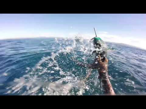 Spearfishing New-Caledonia