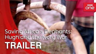 Saving Africa's Elephants: Hugh and the Ivory War | Trailer - BBC One