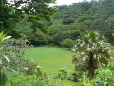 Mcbryde Gardens Kauai Hi Youtube