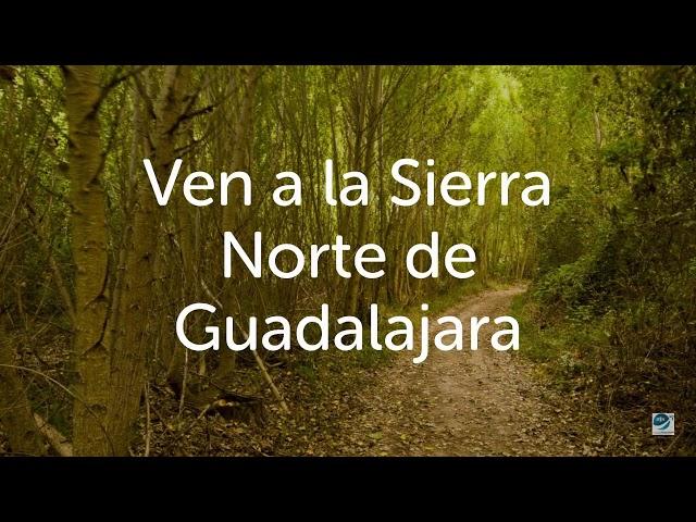 Sierra Norte de Guadalajara. Central de Reservas.