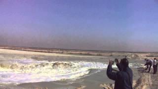الوطن : هانى عبد الرحمن فى قلب احواض الترسيب بقناة السويس الجديدة