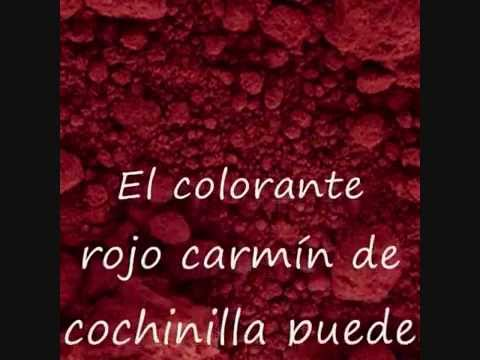 colorantes alimentarios youtube