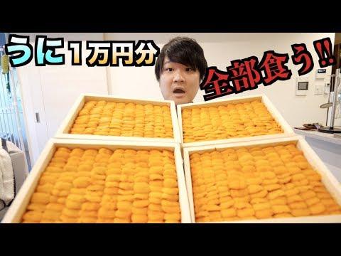 【衝撃】市場で一万円分のウニを買って全部食べたら体に変化が。。。